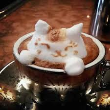 cat coffee top 10 best cats in coffee latte baristas special cats