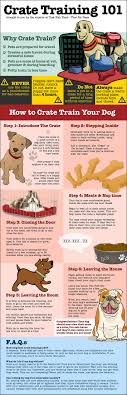 Best 25+ Dog Crates Ideas On Pinterest | Dog Crate, Diy Dog Kennel ... Cloud Nine Dog Traing Best Houses In 2017 For Both Indoor And Outdoor Use Siberian Husky Costs Facts Infographic Ultimate Guide Farmer Tag Wallpapers Country Children Tractor Fields Farm Dogs Plastic Dog Barnhome Kennel Petshop Online 25 Food Bowls Ideas On Pinterest Project Food Cindee X Stackhouse Owyheestar Weimaraners News 614 Best Australian Cattle Images Blue Heelers 5 Facts About Dogs Deworming The Horse Owners Resource Lonely Escapes Yard To Get A Hug From His Friend Youtube Oakwood Park Morton6711