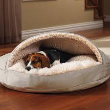 Unchewable Dog Bed by Dog Bed Korrectkritterscom