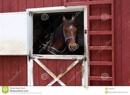 Beautiful Horse Waiting Near Open Barn Door Stock Image - Image ... 11 Best Garage Doors Images On Pinterest Doors Garage Door Open Barn Stock Photo Image Of Retro Barrier Livestock Catchy Door Background Photo Of Bedroom Design Title Hinged Style Doorsbarn Wallbed Wallbeds N More Mfsamuel Finally Posting My Barn Doors With A Twist At The End Endearing 60 Inspiration Bifold Replace Your Laundry Pantry Or Closet Best 25 Farmhouse Tracks And Rails Ideas Hayloft North View With Dropped Down Espresso 3 Panel Beige Walls Window From Old Hdr Creme