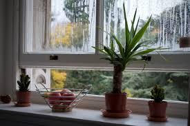 richtig lüften im winter für gutes raumklima wohnklamotte