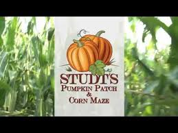 Grapevine Texas Pumpkin Patch by Studts Pumpkin Patch And Dark Acres Haunted Corn Maze Youtube