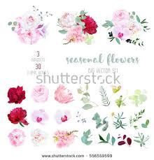 Pink Rose White And Burgundy Red Peony Protea Violet Orchid Hydrangea
