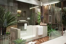 Small Plants For The Bathroom by Appealing Dazzling Apartment Interior Designs Having Open Bathroom