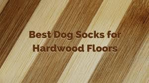 best dog socks for hardwood floors how to protect your floors