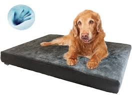 Extra Large Orthopedic Dog Bed by Extra Large Dog Bed Korrectkritterscom