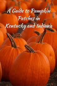 Pumpkin Patch Nashville Area a guide to pumpkin patches in kentucky and indiana family