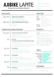 Resume Template Github RESUME 19