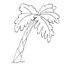 Free Palm Tree Outline New In Set Picture Coloring Page