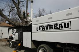 Favreau Forestry Tree Service - Favreau Forestry Altec Lrv58 Forestry Bucket Truck For Sale Youtube Arts Trucks Equipment 3618658 04 Ford F750 Uos On Twitter Our Tandem Axle Xt 70 Pro Work With 24houraday Uptime Scania Newsroom Central Sasgrapple Saleforestry And Timber Truck Services 2008 Liftall Lss601s 65 Big Loaded Logs Harvested From Forestry Plantation Travelling Mackdag 2012 Mack Nr Engine Sound 35318 98 Fseries