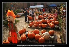 Pumpkin Patch College Station 2014 by The Great Garden City Pumpkin Patch Long Island Pulse Magazine