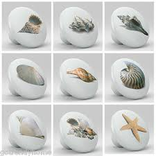 Real Seashell Cabinet Knobs by Drawer Pulls Collection On Ebay