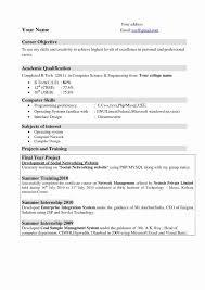 Computer Science Resume Valid Sample Lecturer Puter Inspirationa