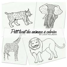 Le Petit Livret Des Animaux à Colorier EBook Door Lison Nolwenn