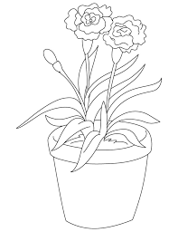Light Red Carnation Coloring Page