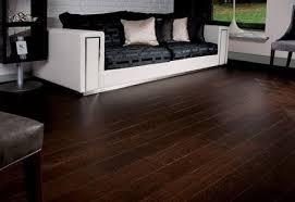 Buffing Hardwood Floors Youtube by Awesome Best 25 Black Hardwood Floors Ideas On Pinterest Black