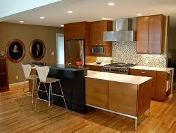 50s Re Do Modern Kitchen
