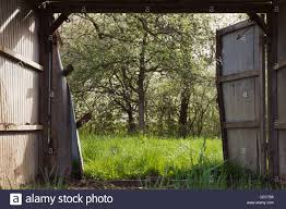 View Through A Open Barn Door Into The Spring With Trees And Fresh ... 11 Best Garage Doors Images On Pinterest Doors Garage Door Open Barn Stock Photo Image Of Retro Barrier Livestock Catchy Door Background Photo Of Bedroom Design Title Hinged Style Doorsbarn Wallbed Wallbeds N More Mfsamuel Finally Posting My Barn Doors With A Twist At The End Endearing 60 Inspiration Bifold Replace Your Laundry Pantry Or Closet Best 25 Farmhouse Tracks And Rails Ideas Hayloft North View With Dropped Down Espresso 3 Panel Beige Walls Window From Old Hdr Creme