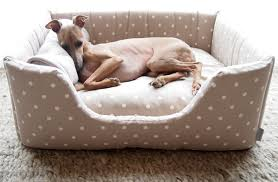Dog Beds The 19 Best Dog Beds For Dogs