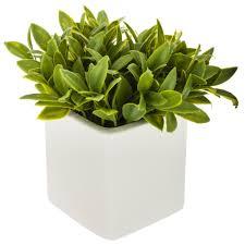 blumen in einem dekorativen topf für ein badezimmer künstliche pflanze für einen balkon atmosphera emako