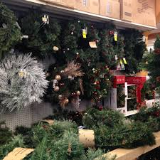 Fraser Fir Christmas Trees For Sale by Christmas Trees And Decorations Weaver U0027s Ace Hardware