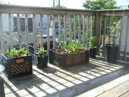 Crate Garden 4 Use Milk Crates As Planters Wooden Ideas