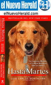 12 Best Hasta Martes Images On Pinterest | Golden Retrievers ... Emilyanns Events Schedule For Author Emilyann Girdner Store Closings By State In 2016 Online Bookstore Books Nook Ebooks Music Movies Toys Filesaltamonteorg Eventsold Filesgmservicescra Archive Tallahassee Chapter Of The National Association Professional Women Christiana Mall Wikipedia 8221 Breeze Cove Ln Orlando Fl 20 Photos Mls O5549046 Movoto Best 25 Louise Barnes Ideas On Pinterest Black Sails Hinesville Ft Stewart Liberty County Area Featured Listings