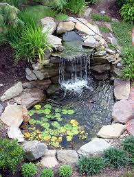 Garden : Fish Pond In The Garden House Simple Design Idea ... Fish Pond From Tractor Or Car Tires 9 Steps With Pictures How To Build Outdoor Waterfalls Inexpensively Garden Ponds Roadkill Crossing Diy A Natural In Your Backyard Worldwide Cstruction Of Simmons Family 62007 Build Your Fish Pond Garden 6 And Waterfall Home Design Small Ideas At Univindcom Thats Look Wonderfull Landscapings Wonderful Koi Amaza Designs Peachy Ponds Exquisite