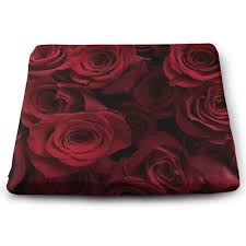 Amazon.com: Weerbar Seat Cushion For Office Chair, Stain ...