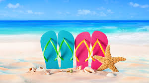 Wallpaper Blue And Pink Slippers Starfish Seashell Sea Beach