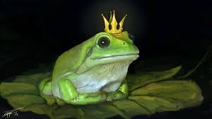 100 King Of The Frogs 100 Frog Yasminroohi