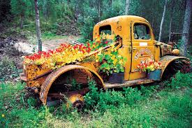 Old Truck Flower Beds