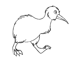Kiwi Bird Walking Aroung Coloring Pages PagesFull