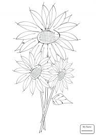 Large Size Of Sunflower Coloring Page Pages Kids Simple Leaf