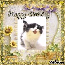 happy birthday with cats Google Search Unusual ART Pinterest
