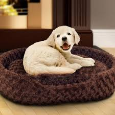 Chew Resistant Dog Bed by Tips Chew Proof Dog Bed Tuff Dog Toys Chew Resistant Dog Bed