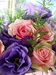 Lisianthus a gorgeous long lasting bouquet flower
