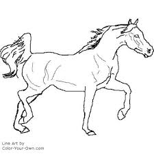 Arabian Horse Coloring Pages Tweet Blog Newest Additions Main Page Index In