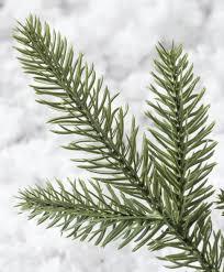 9ft Pencil Christmas Tree by Oregonian Slim Christmas Tree Tree Classics