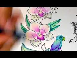 Accompanying Channel For Thecoloringaddict A Blog About Adult Jungle VideoJungle FlowersAdult ColoringColoring