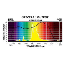 1000 Watt Hps Lamp Height by Sunmaster 50595 Yellow Blossom Hps Grow Light 1000w