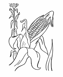 Thanksgiving Holiday Coloring Page Sheets Harvest