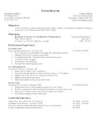 Career Objective For Resume Objectives Example Examples Resumes Best