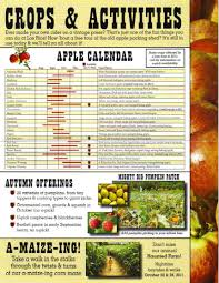 Rileys Pumpkin Patch Oak Glen by Oak Glen Apple Education