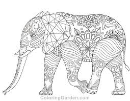 Free Printable Elephant Adult Coloring Page Download It In PDF Format At
