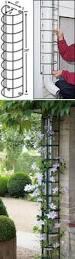 Decorative Hose Bib Extender by Best 25 Downspout Ideas Ideas On Pinterest Driveway Landscaping