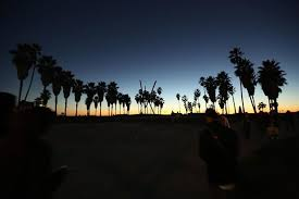 Chrissy Young On Twitter Venicebeach Ca California Beach Sunset Sunsetlovers Palmtrees Ocean Skyscape