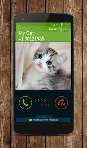 kitty cat kitty cat call android apps on play