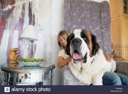 Saint Bernard Dog Sitting On Woman's Lap Armchair Stock Photo ... Faux Suede Pet Fniture Covers For Sofas Loveseats And Chairs Comfort Research Big Joe Bagimals Dawson The Dog Bean Bag Armchair Shih Tzu Lap On The Stock Photo Image 350298 Dog Cat Chamomile Amazoncom Sure Fit Quilted Throw Sofa Slipcover Taupe King Sitting His Throne 1018169 Shutterstock Antique Asian Chair Chinese Export Wood Carved Dragon Lion Foo Me My Dogcat Fold Out Bed With Protector Available In Dogs Amazoncouk Boxer Destroyed A Leather Armchair Alone At Home Damaged Hound Buttonback Occasional Loaf