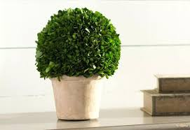 Outdoor Faux Boxwood Cone Ball 48